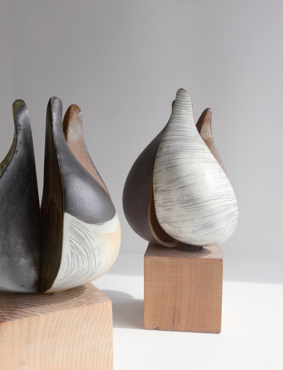 contemporary ceramics, ceramics sheffield, ceramic seed pods